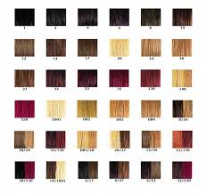 extensions de cheveux nuancier des couleurs. Black Bedroom Furniture Sets. Home Design Ideas