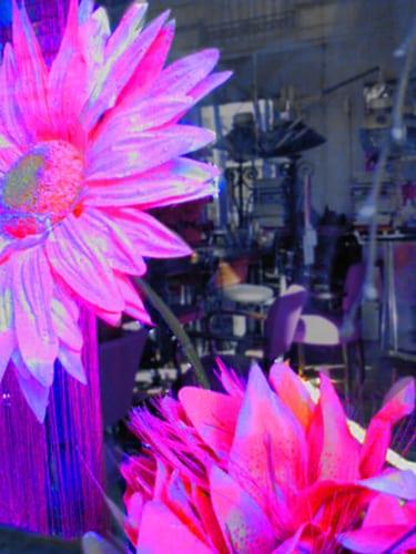 Dimanche  Posté par Yann Kukucka  sur 2006-04-30 09:19:33      Tagged:  , hairdressing , salon , window , pinks , flowers   …