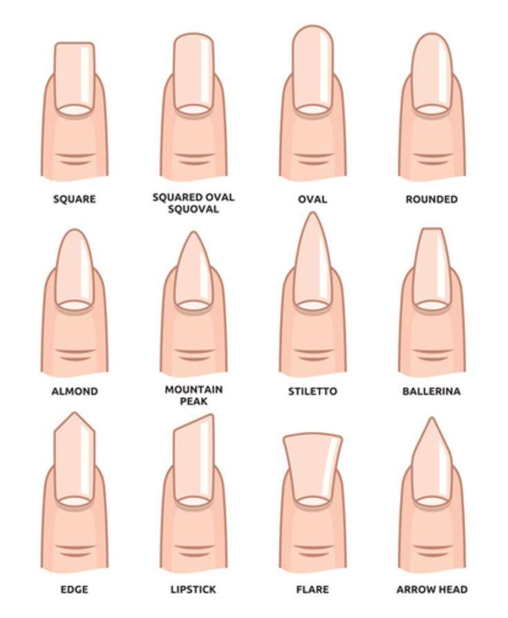 Welche Nagelformen gibt es und welche Form passt zu dir und deinen Nägeln? In unserem Guide erhältst du alle Infos und viele wertvolle Tipps. #nägel #beautytipps Source by lenakursch   …